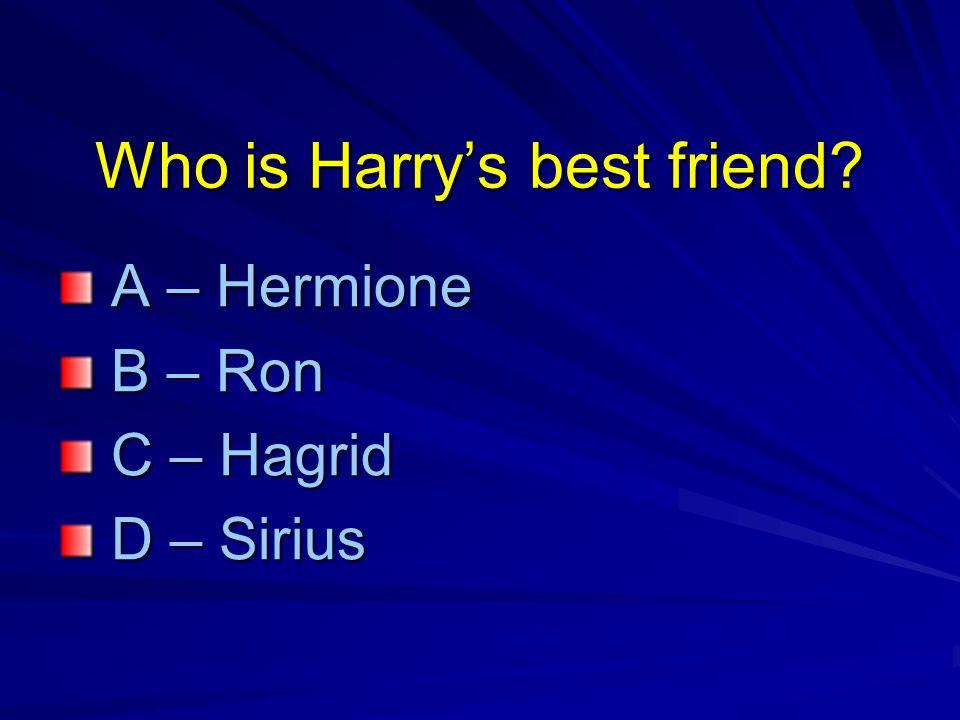 Who is Harrys best friend.