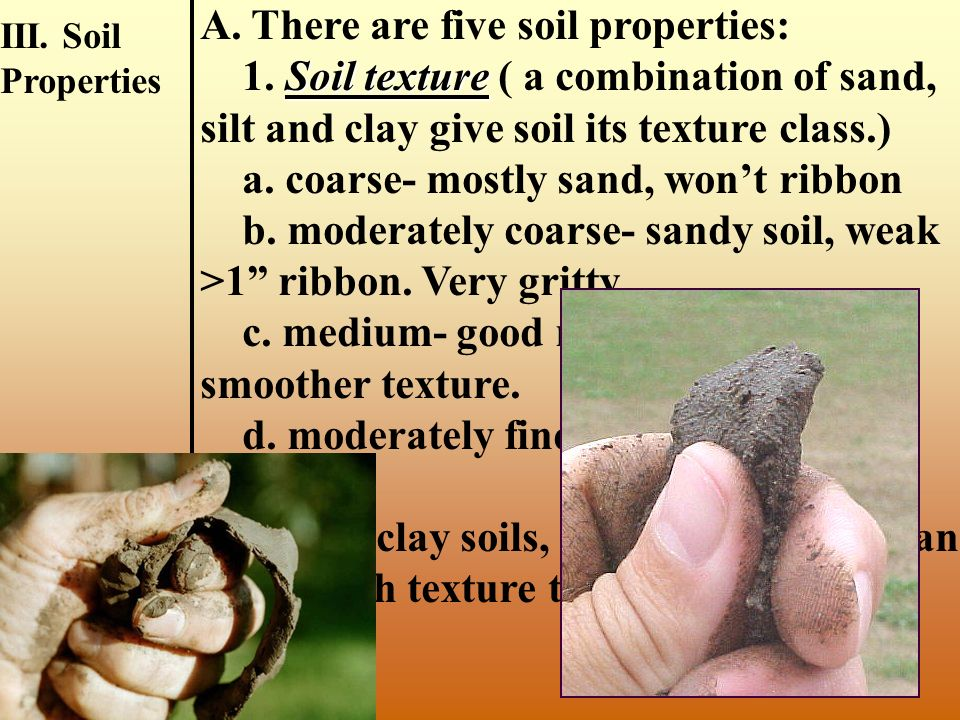 A. There are three parts: 1. Measuring soil properties 2. Interpreting, determining class 3. Management decisions B. A soil judging site: 1. A 100 x 1