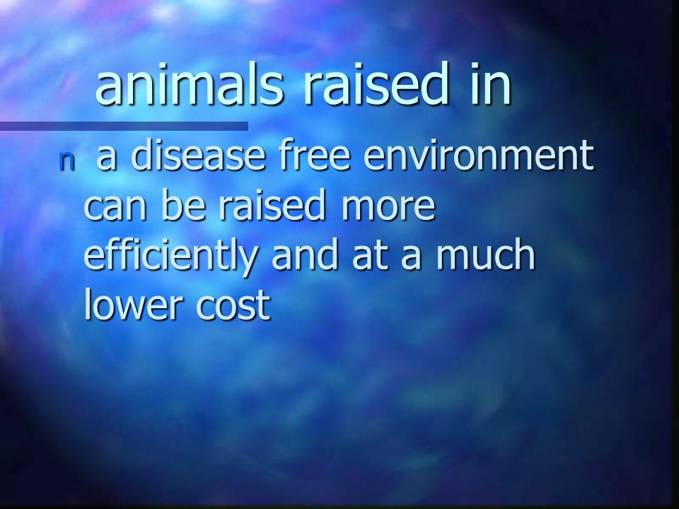 animals raised in n a disease free environment can be raised more efficiently and at a much lower cost