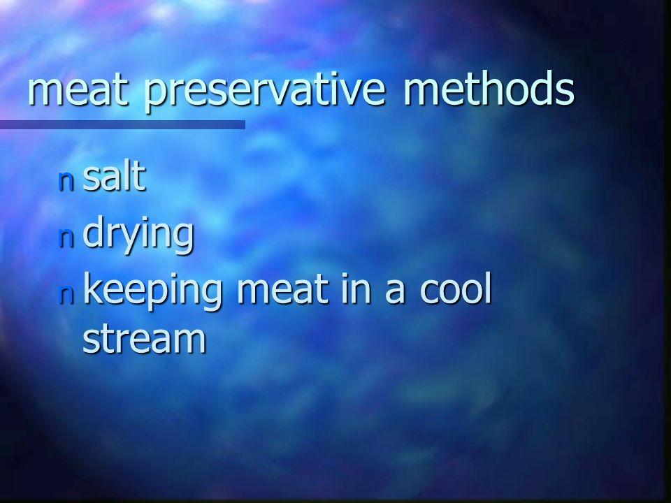 meat preservative methods n salt n drying n keeping meat in a cool stream