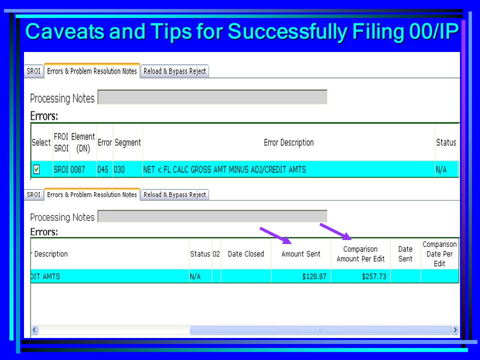 116 Caveats and Tips for Successfully Filing 00/IP