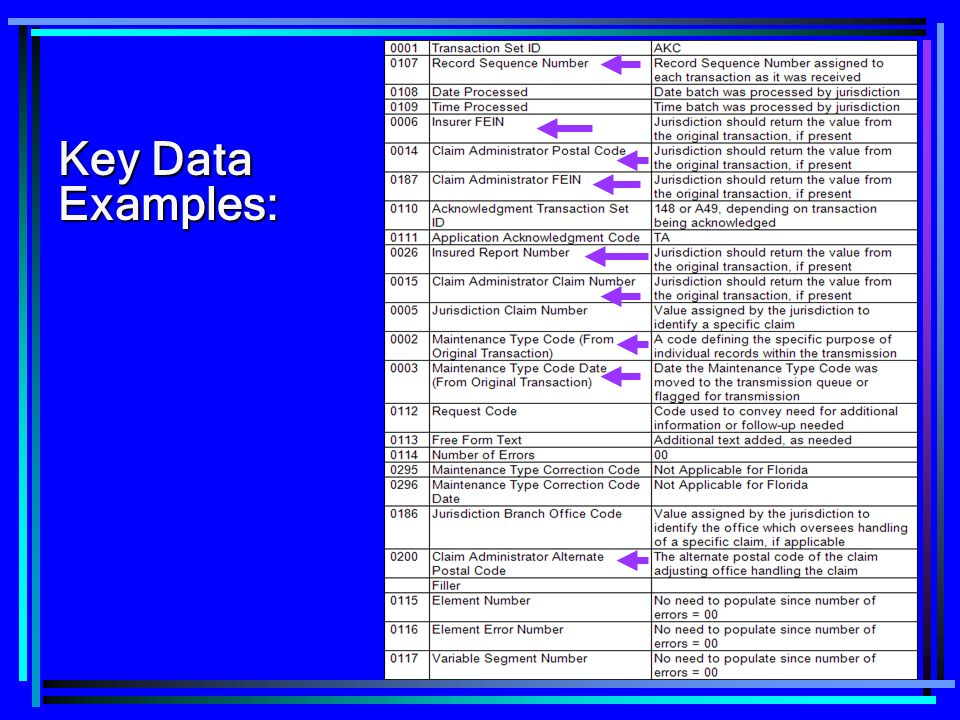 124 Key Data Examples: