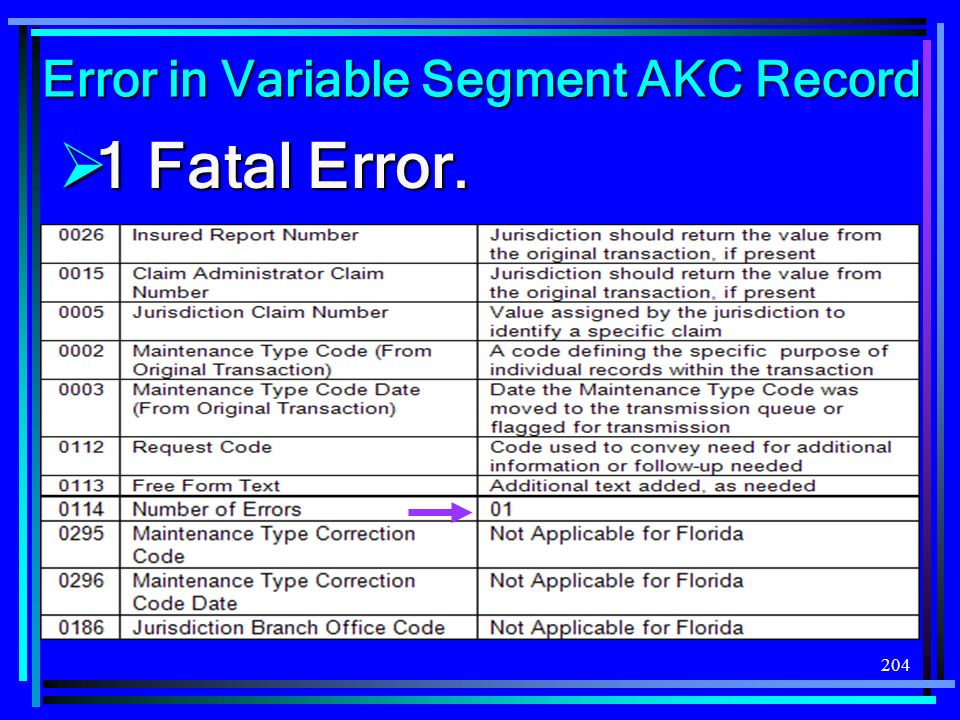 204 Error in Variable Segment AKC Record 1 Fatal Error. 1 Fatal Error.