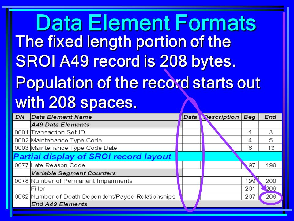92 Data Element Formats The fixed length portion of the SROI A49 record is 208 bytes.