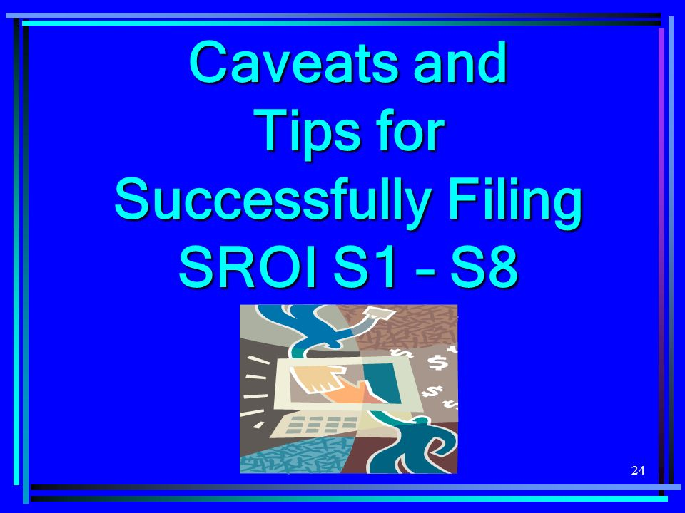 24 Caveats and Tips for Successfully Filing SROI S1 – S8