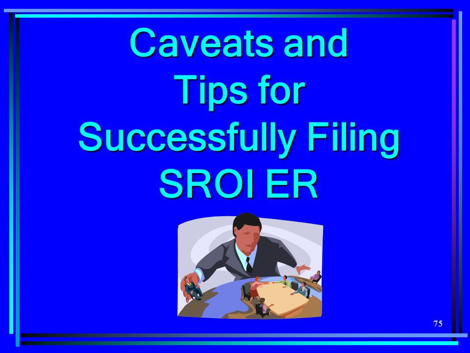 75 Caveats and Tips for Successfully Filing SROI ER