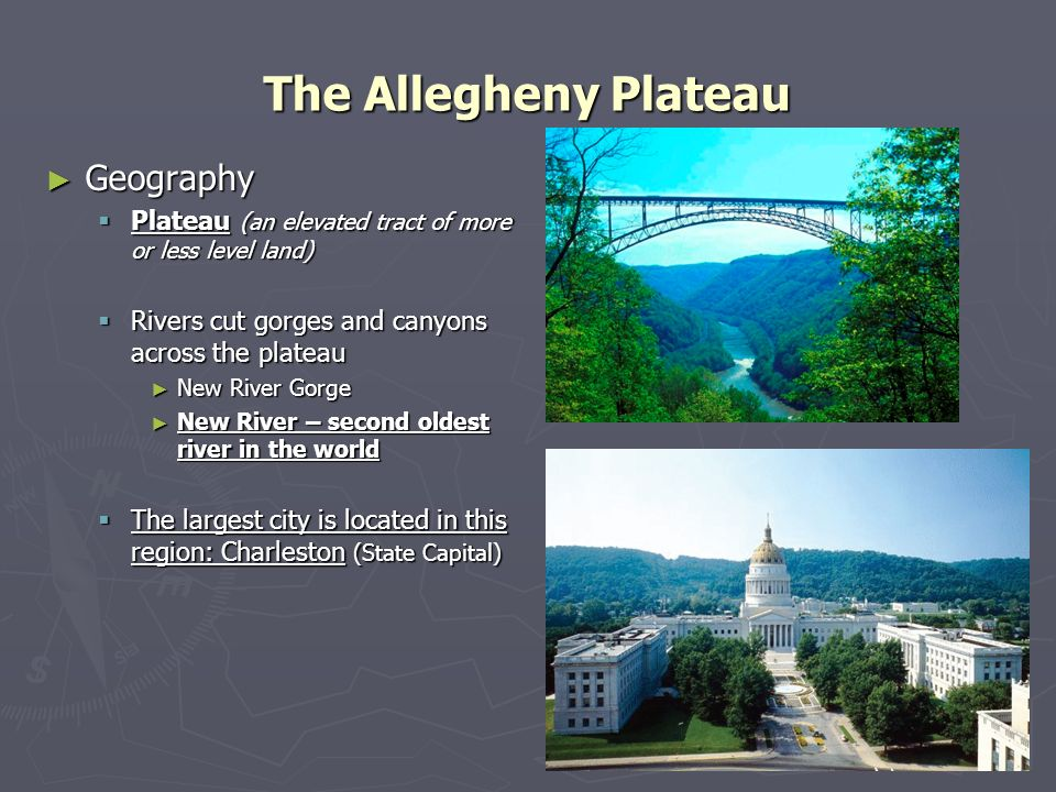 The Allegheny Plateau Geography Geography Plateau (an elevated tract of more or less level land) Plateau (an elevated tract of more or less level land