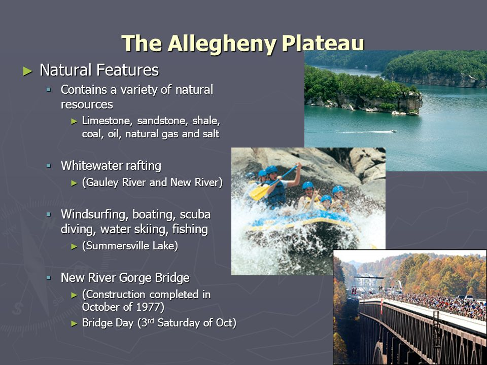 The Allegheny Plateau Natural Features Natural Features Contains a variety of natural resources Contains a variety of natural resources Limestone, san