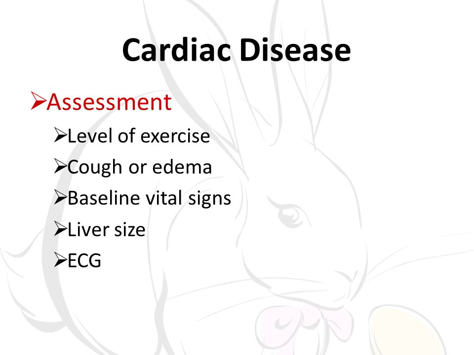 Cardiac Disease Assessment Level of exercise Cough or edema Baseline vital signs Liver size ECG
