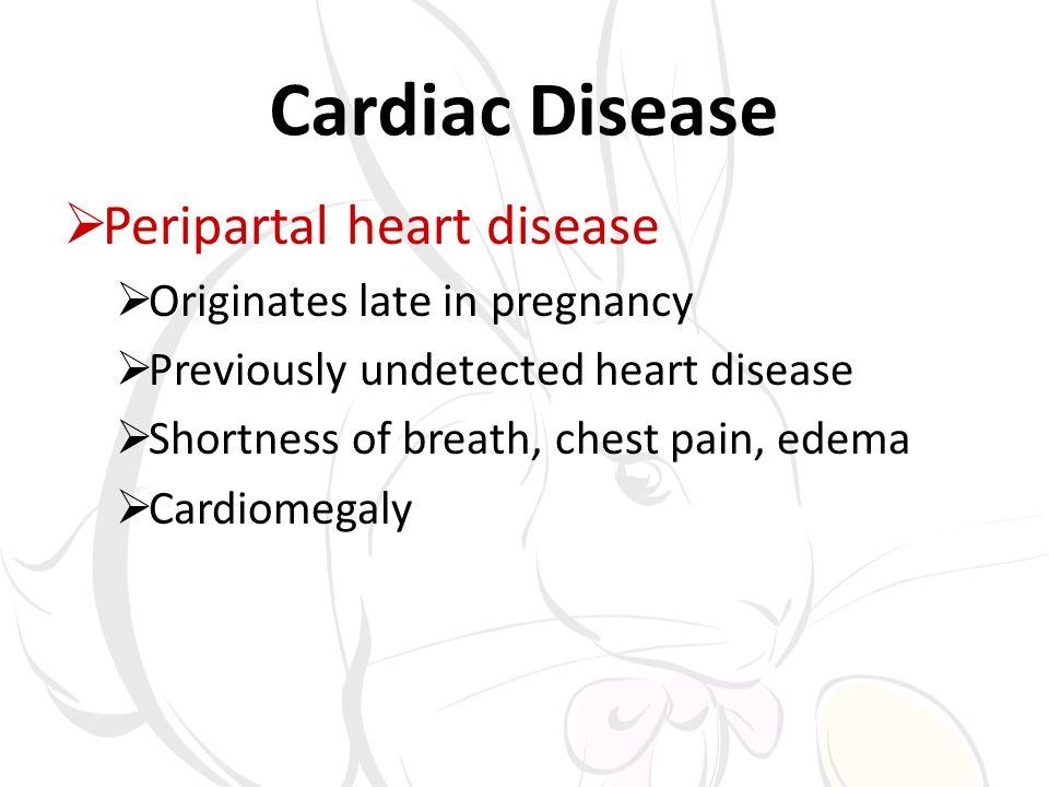 Cardiac Disease Peripartal heart disease Originates late in pregnancy Previously undetected heart disease Shortness of breath, chest pain, edema Cardi