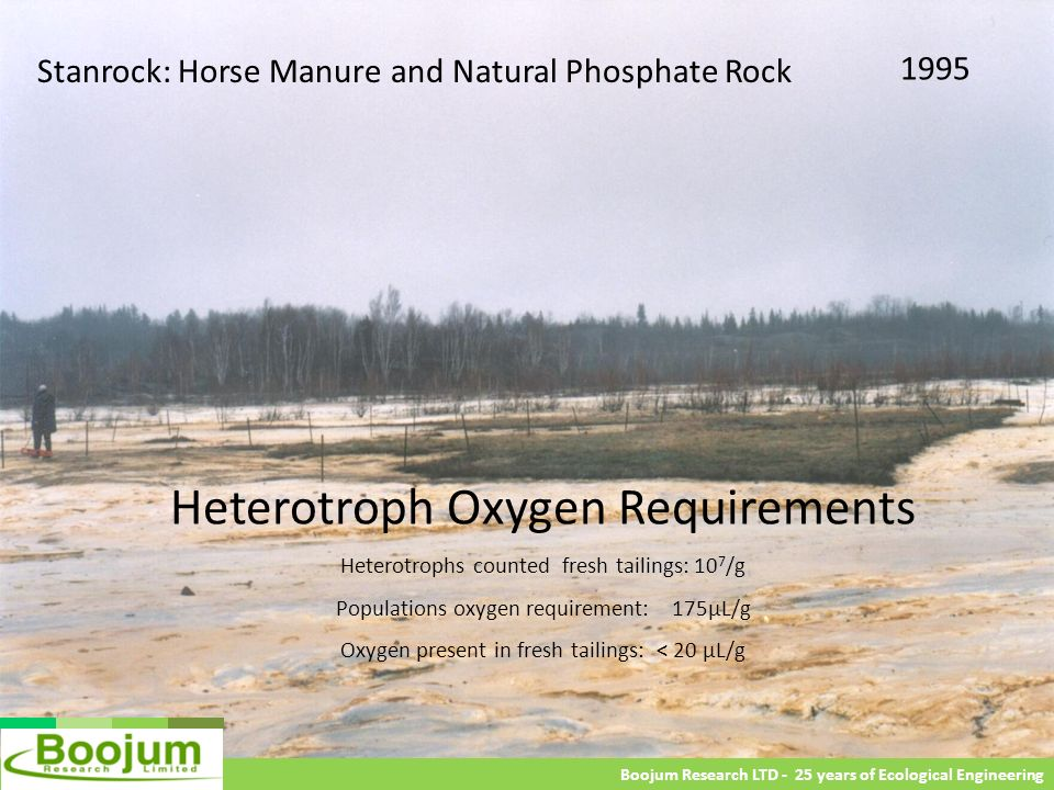 Stanrock: Horse Manure and Natural Phosphate Rock 1995 Boojum Research LTD - 25 years of Ecological Engineering Heterotroph Oxygen Requirements Hetero
