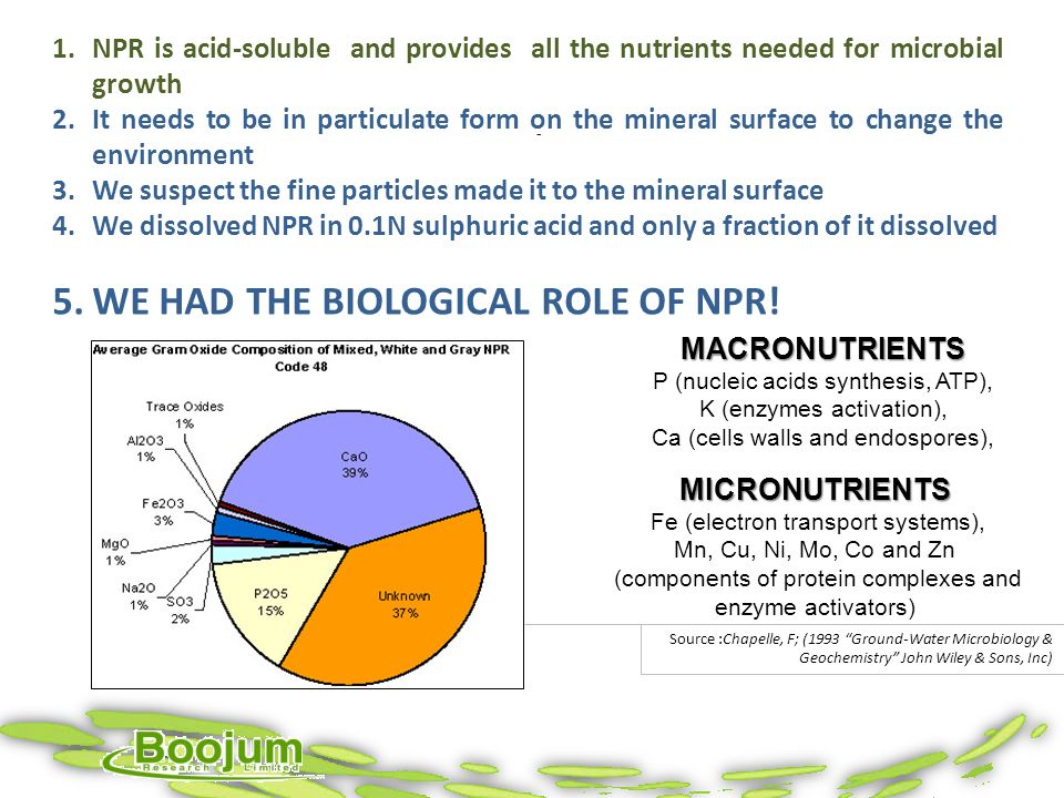 MACRONUTRIENTS P (nucleic acids synthesis, ATP), K (enzymes activation), Ca (cells walls and endospores), Source :Chapelle, F; (1993 Ground-Water Micr