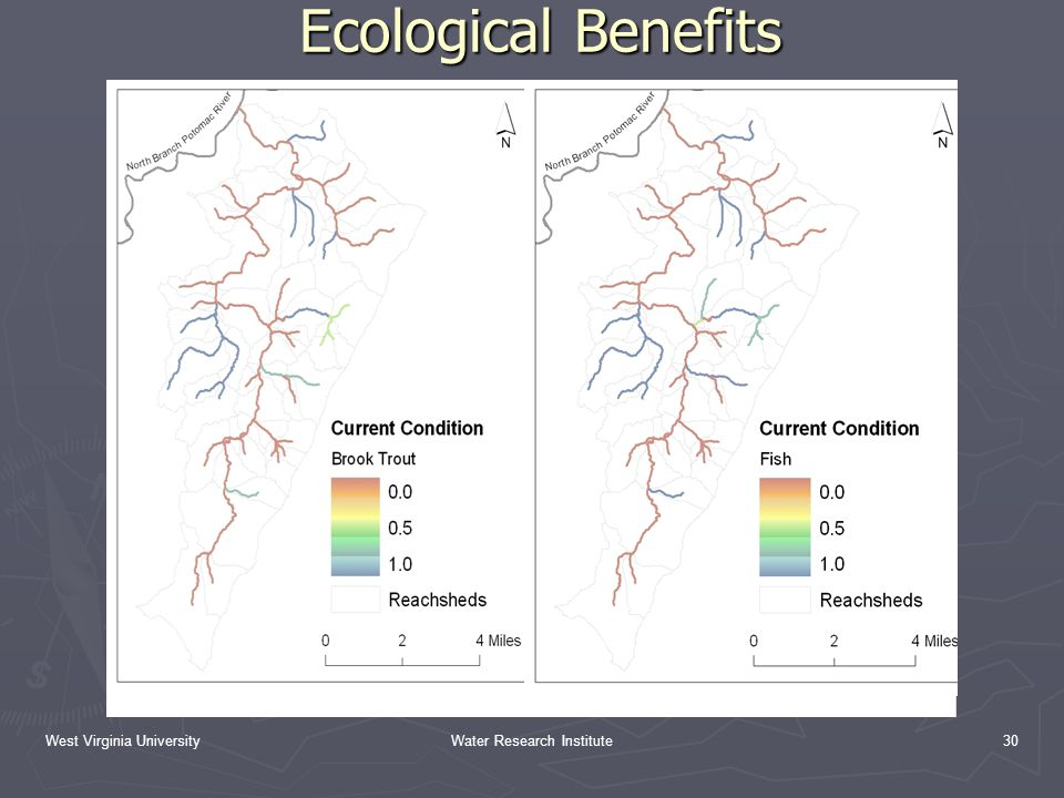 West Virginia UniversityWater Research Institute30 Ecological Benefits