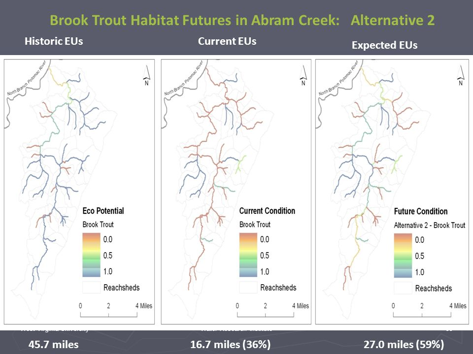West Virginia UniversityWater Research Institute33 45.7 miles 16.7 miles (36%)27.0 miles (59%) Historic EUsCurrent EUs Expected EUs Brook Trout Habitat Futures in Abram Creek: Alternative 2