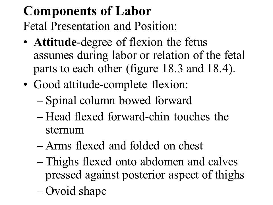 Components of Labor Fetal Presentation and Position: Attitude-degree of flexion the fetus assumes during labor or relation of the fetal parts to each