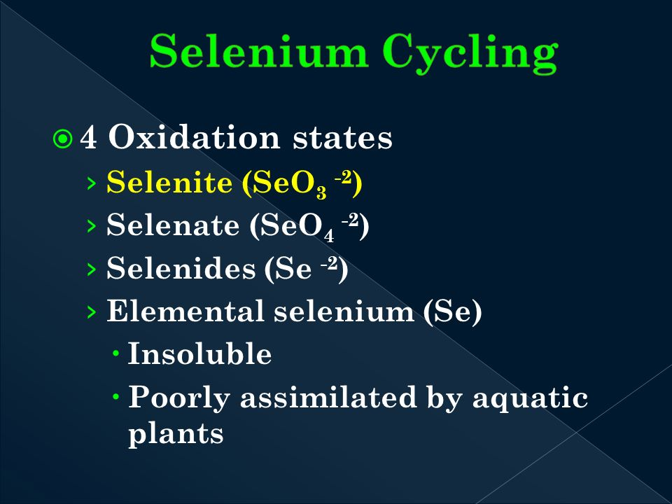 4 Oxidation states Selenite (SeO 3 -2 ) Selenate (SeO 4 -2 ) Selenides (Se -2 ) Elemental selenium (Se) Insoluble Poorly assimilated by aquatic plants