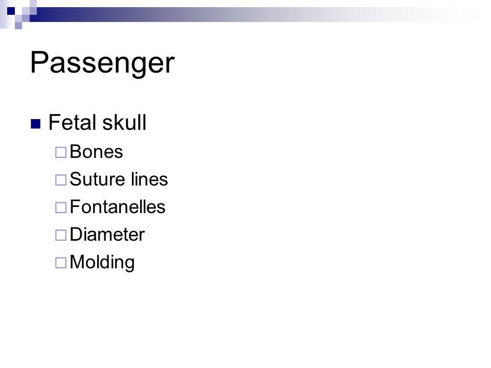 Passenger Fetal skull Bones Suture lines Fontanelles Diameter Molding