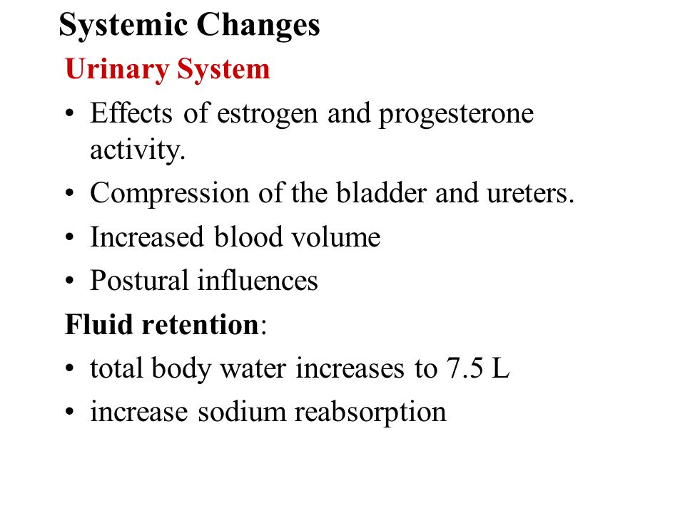 Systemic Changes Urinary System Effects of estrogen and progesterone activity. Compression of the bladder and ureters. Increased blood volume Postural
