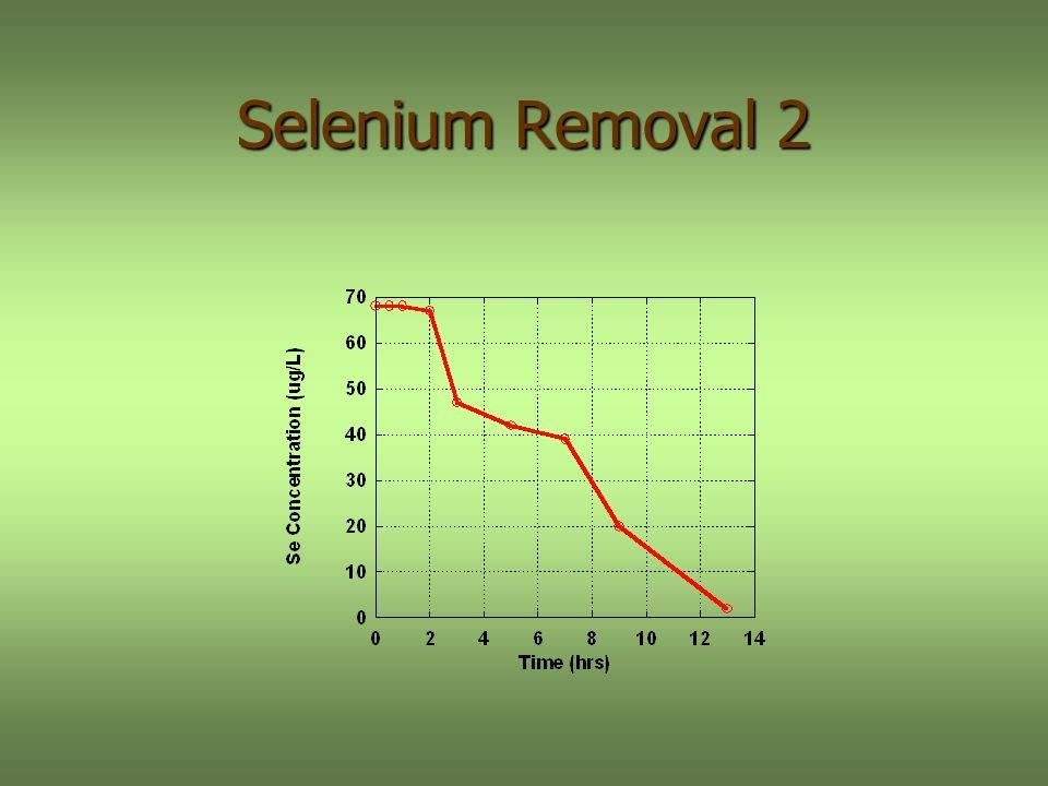 Selenium Removal 2