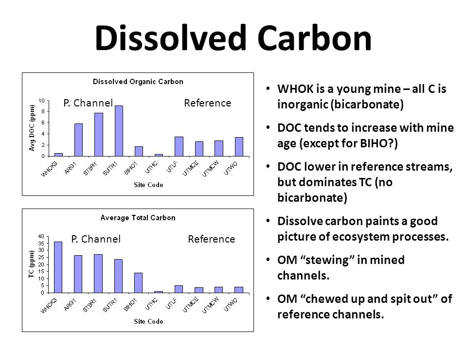 Dissolved Carbon P. Channel Reference WHOK is a young mine – all C is inorganic (bicarbonate) DOC tends to increase with mine age (except for BIHO?) D