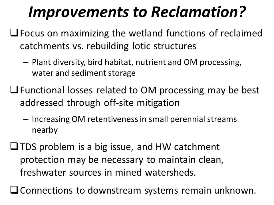 Focus on maximizing the wetland functions of reclaimed catchments vs.