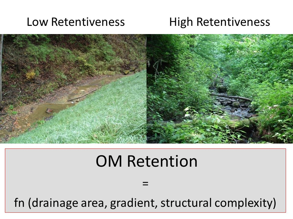 OM Retention = fn (drainage area, gradient, structural complexity) Low RetentivenessHigh Retentiveness