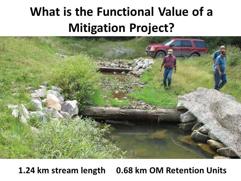 What is the Functional Value of a Mitigation Project.