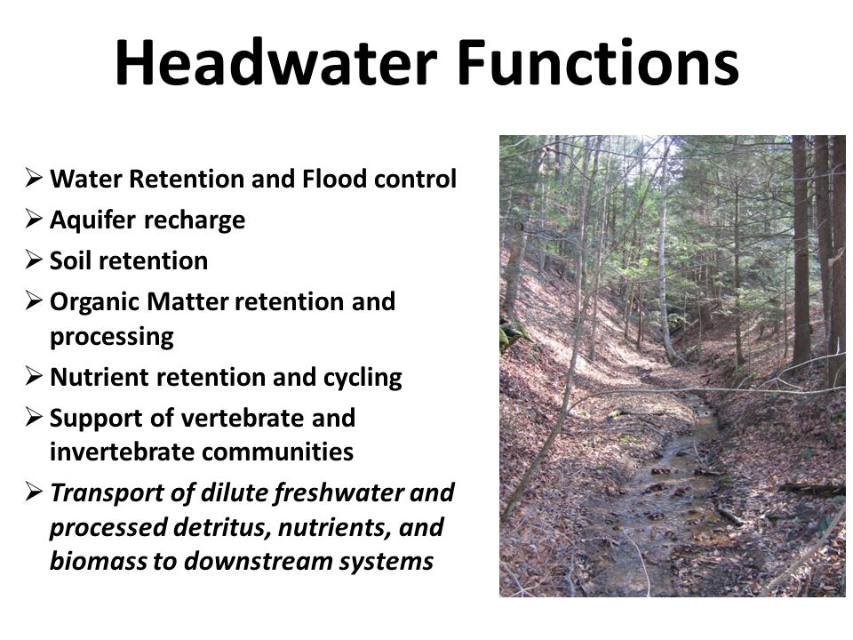 Pre-mining Function – Post-mining Function = Mitigation Requirement - =