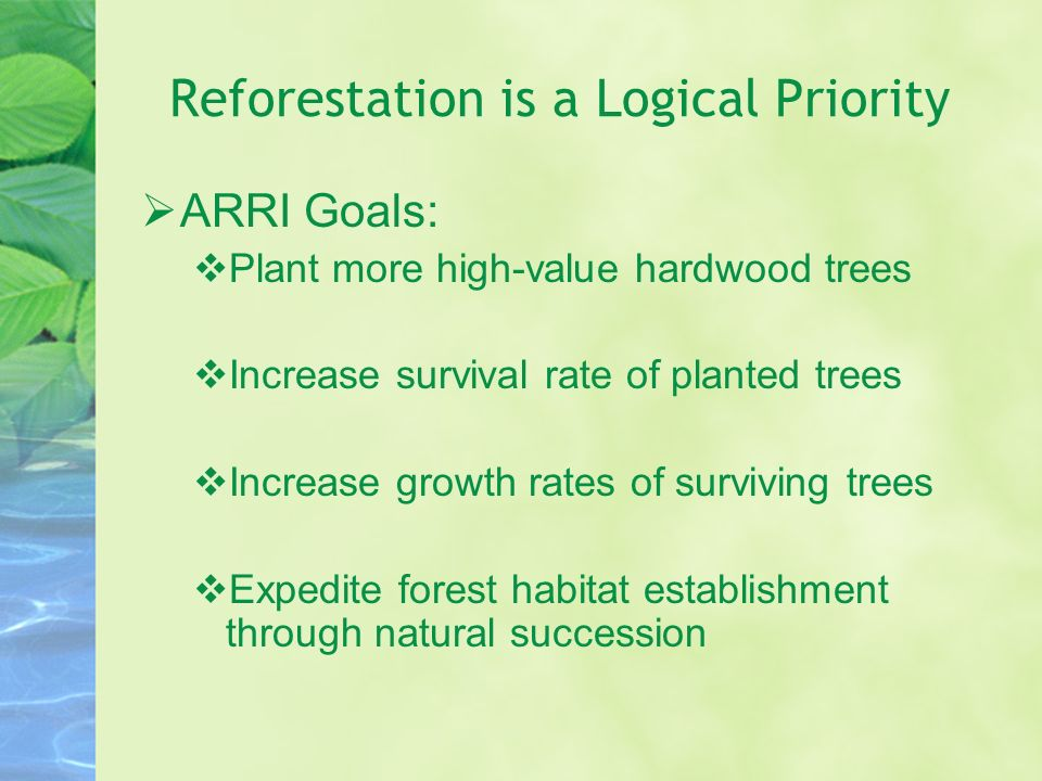 Reforestation is a Logical Priority ARRI Goals: Plant more high-value hardwood trees Increase survival rate of planted trees Increase growth rates of