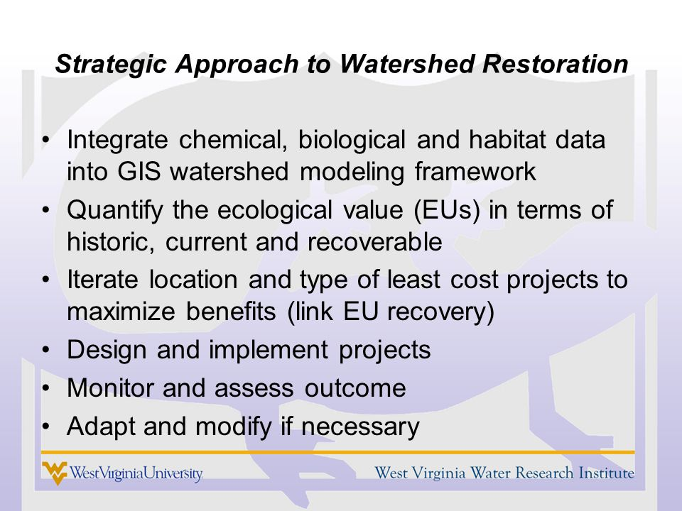 Strategic Approach to Watershed Restoration Integrate chemical, biological and habitat data into GIS watershed modeling framework Quantify the ecological value (EUs) in terms of historic, current and recoverable Iterate location and type of least cost projects to maximize benefits (link EU recovery) Design and implement projects Monitor and assess outcome Adapt and modify if necessary