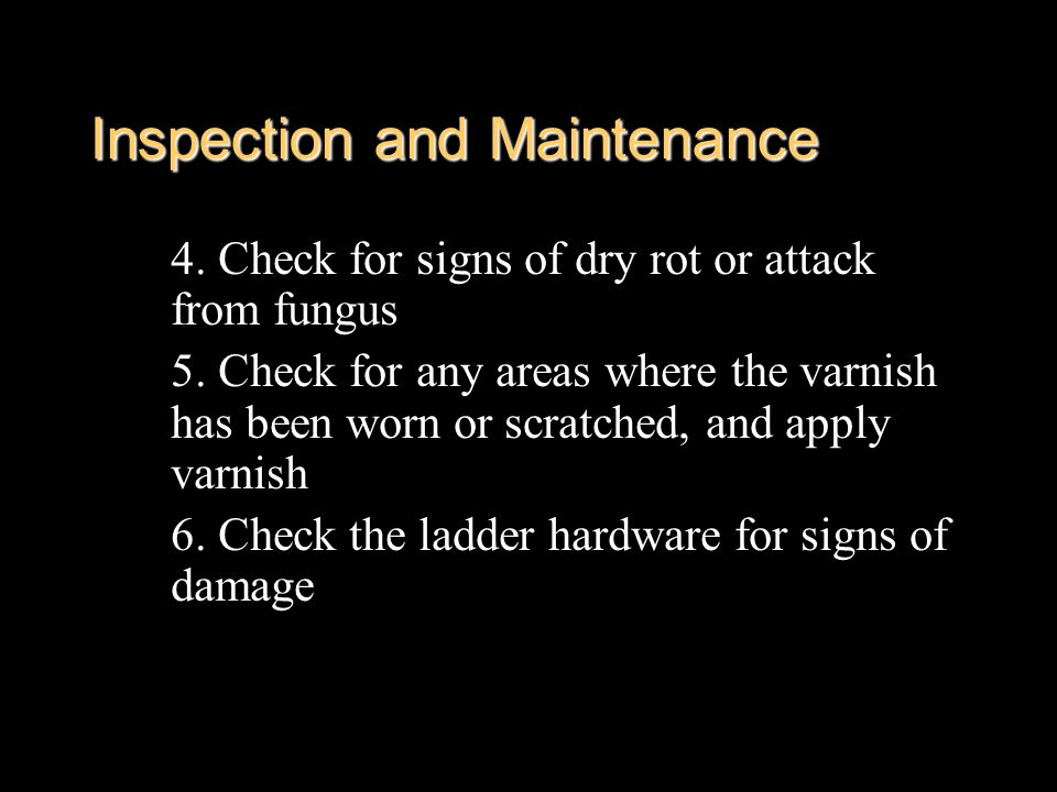Inspection and Maintenance 4. Check for signs of dry rot or attack from fungus 5. Check for any areas where the varnish has been worn or scratched, an