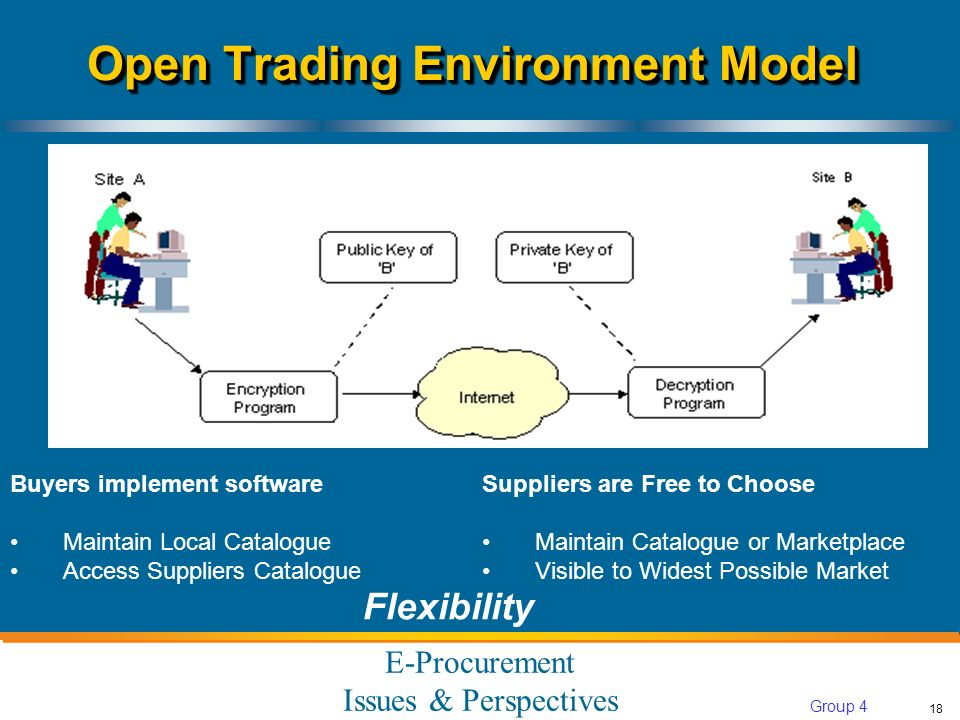 E-Procurement Issues & Perspectives 18 Group 4 Buyers implement software Maintain Local Catalogue Access Suppliers Catalogue Open Trading Environment Model Suppliers are Free to Choose Maintain Catalogue or Marketplace Visible to Widest Possible Market Flexibility