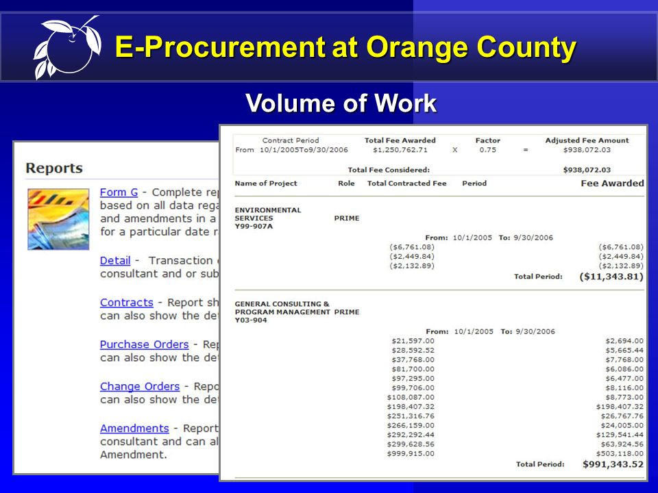 19 PROFESSIONAL SERVICES E-Procurement at Orange County Term Contracts