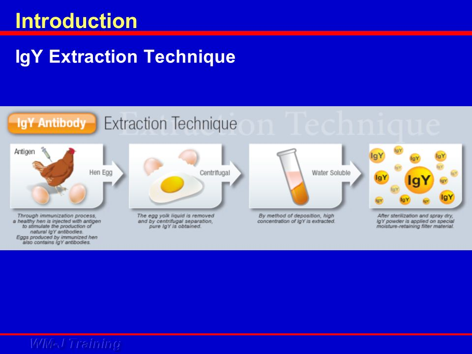 PhotoCatalytic Mechanism by TITANIUM OXIDE Introduction