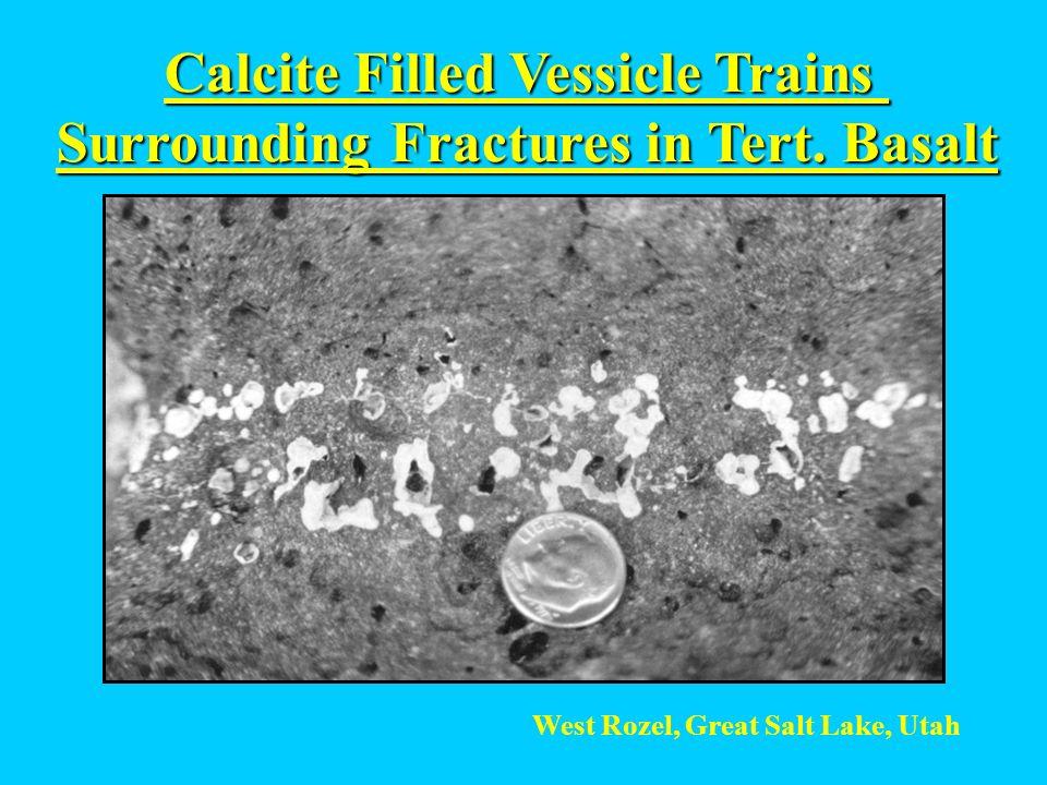Calcite Filled Vessicle Trains Surrounding Fractures in Tert. Basalt West Rozel, Great Salt Lake, Utah
