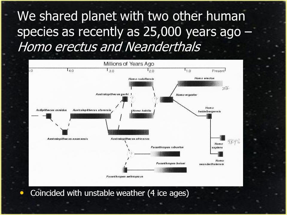 We shared planet with two other human species as recently as 25,000 years ago – Homo erectus and Neanderthals Coincided with unstable weather (4 ice a