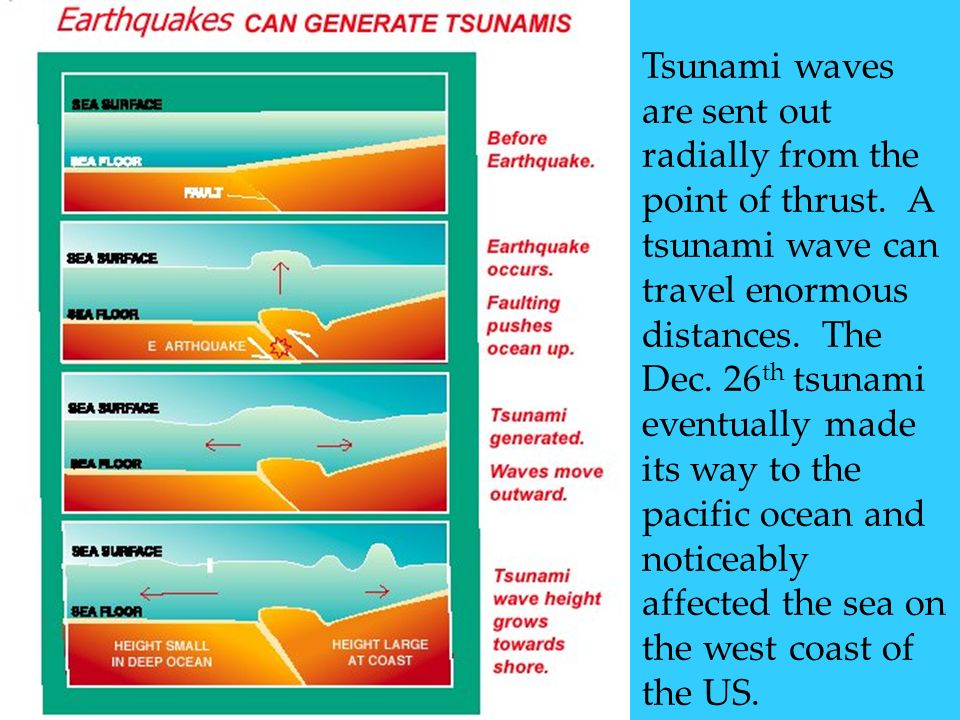 Tsunami waves are sent out radially from the point of thrust. A tsunami wave can travel enormous distances. The Dec. 26 th tsunami eventually made its