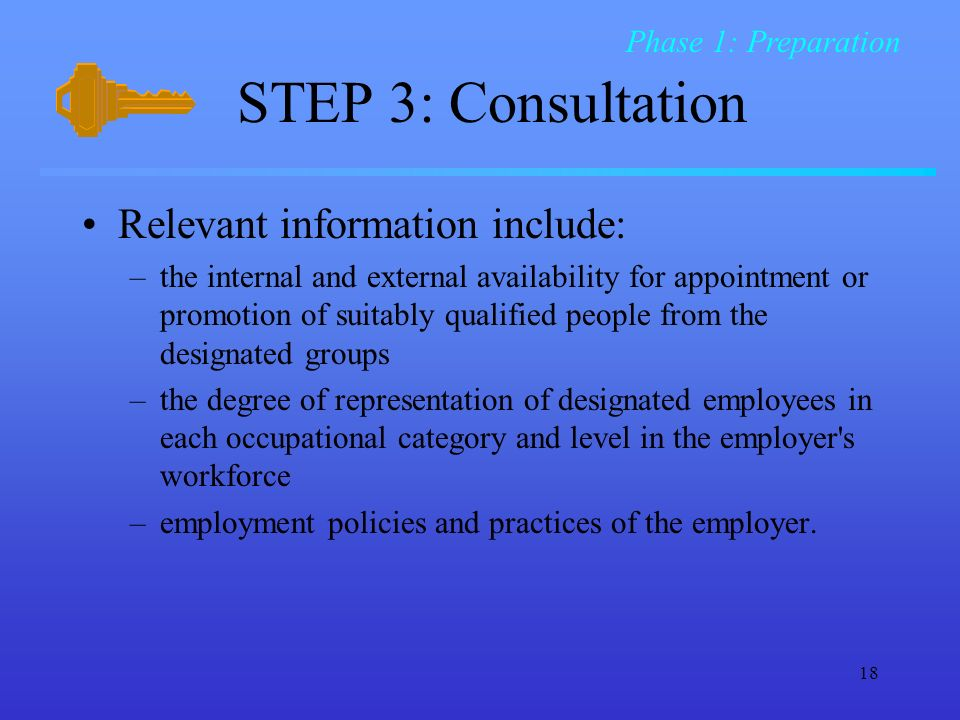18 STEP 3: Consultation Relevant information include: –the internal and external availability for appointment or promotion of suitably qualified people from the designated groups –the degree of representation of designated employees in each occupational category and level in the employer s workforce –employment policies and practices of the employer.