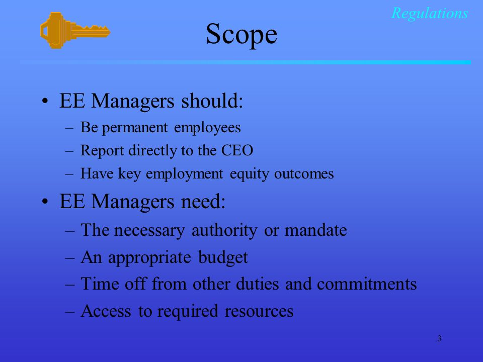 3 Scope EE Managers should: –Be permanent employees –Report directly to the CEO –Have key employment equity outcomes EE Managers need: –The necessary authority or mandate –An appropriate budget –Time off from other duties and commitments –Access to required resources Regulations