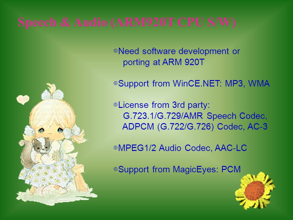 Speech & Audio (ARM920T CPU S/W) Need software development or porting at ARM 920T Support from WinCE.NET: MP3, WMA License from 3rd party: G.723.1/G.7