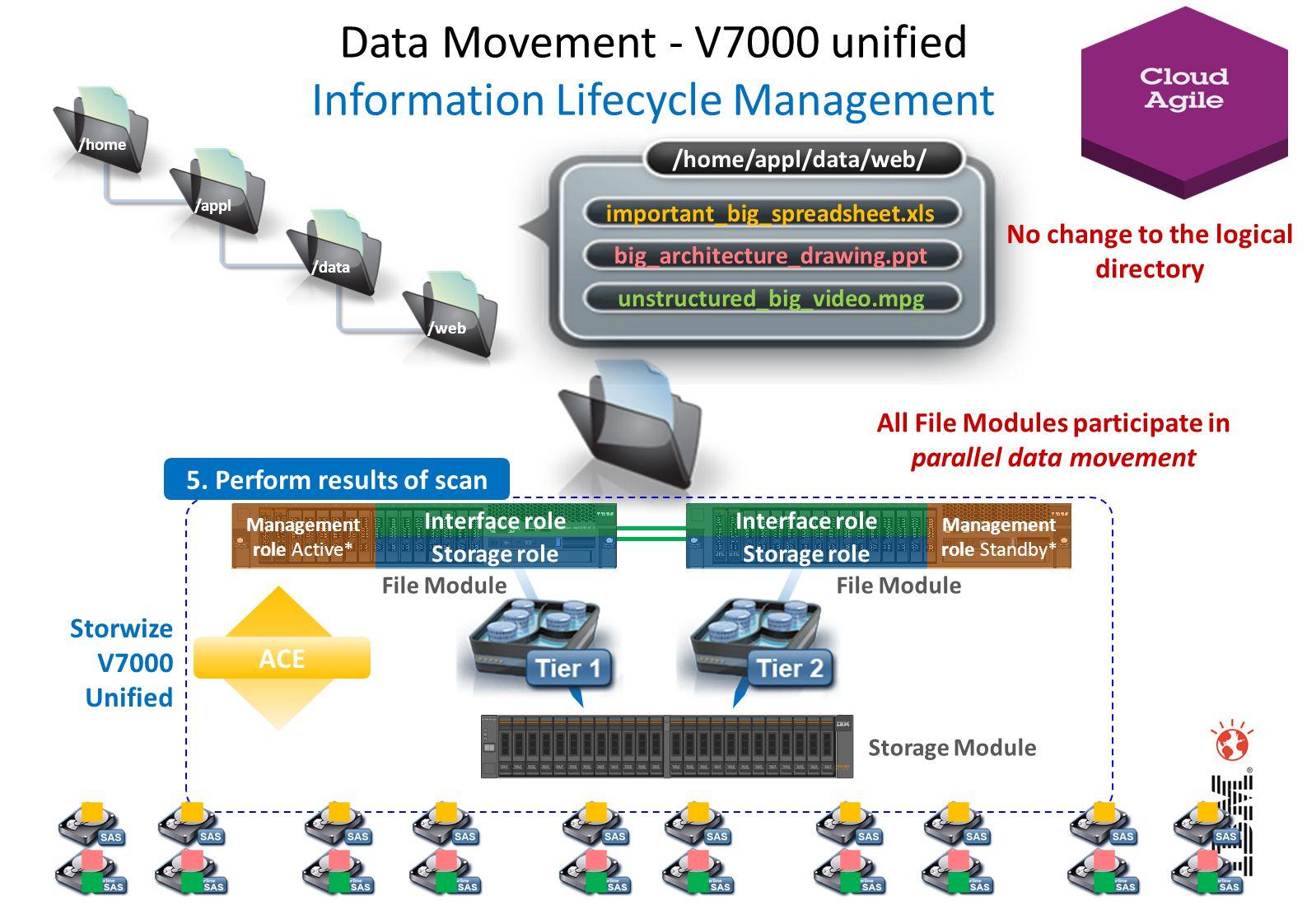 Management role Active* Storage role Interface role Management role Standby* Storage role Interface role Storage Module File Module ACE Storwize V7000