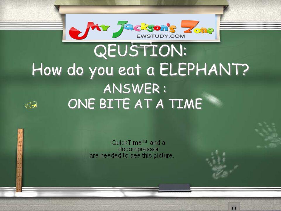 QEUSTION: How do you eat a ELEPHANT? ANSWER : / ONE BITE AT A TIME ANSWER : / ONE BITE AT A TIME
