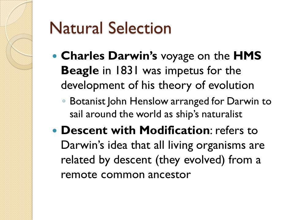Natural Selection Charles Darwins voyage on the HMS Beagle in 1831 was impetus for the development of his theory of evolution Botanist John Henslow ar