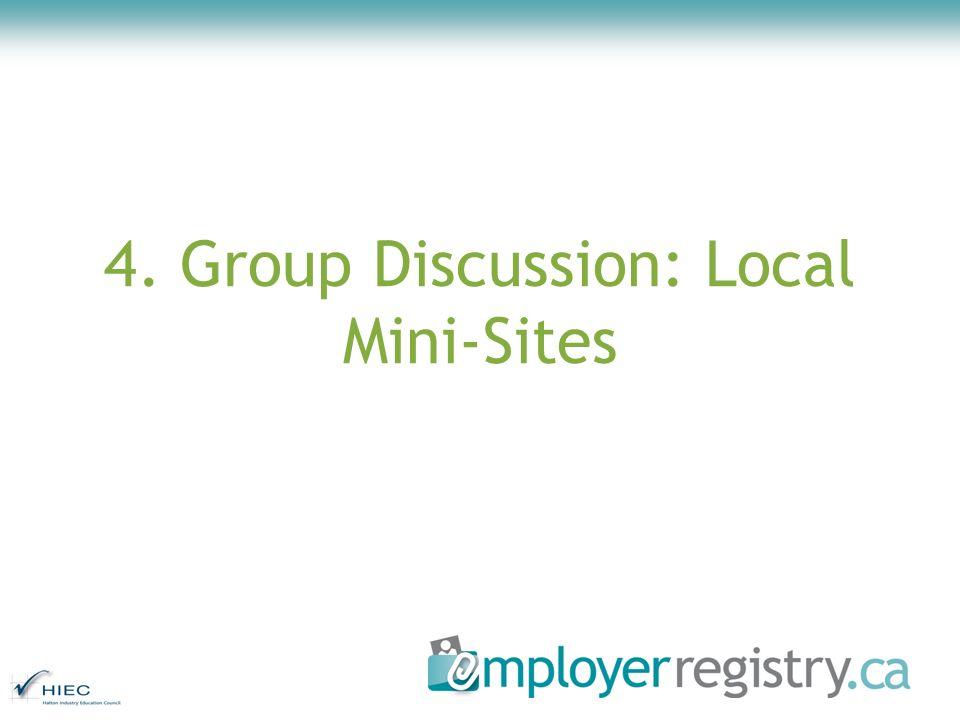 4. Group Discussion: Local Mini-Sites