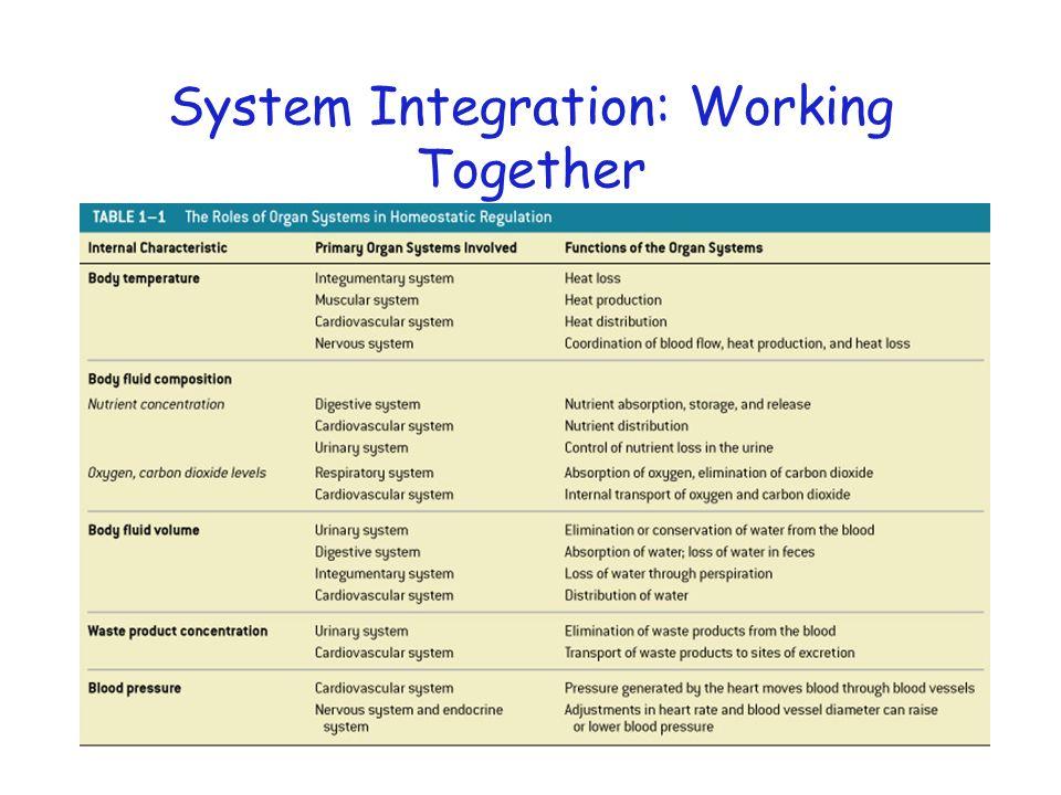 System Integration: Working Together Table 1–1