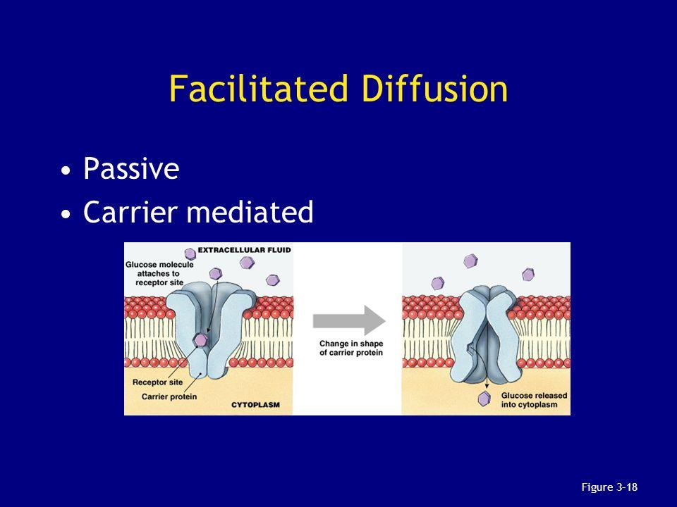 Facilitated Diffusion Passive Carrier mediated Figure 3–18