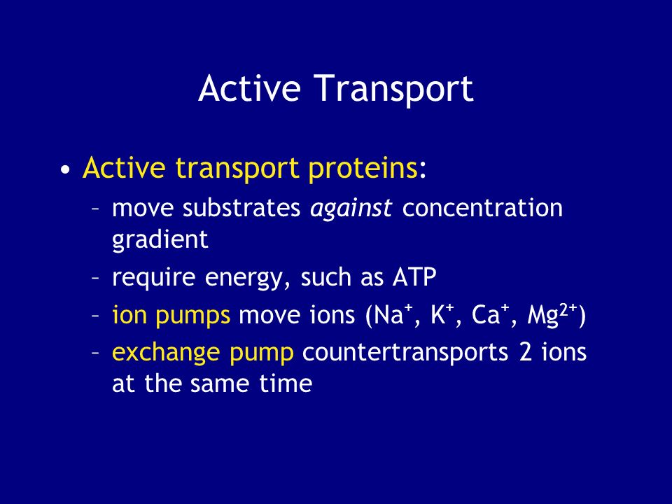 Active Transport Active transport proteins: –move substrates against concentration gradient –require energy, such as ATP –ion pumps move ions (Na +, K