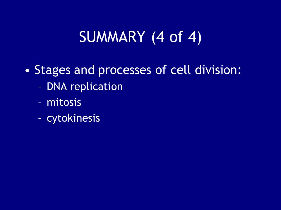 SUMMARY (4 of 4) Stages and processes of cell division: –DNA replication –mitosis –cytokinesis