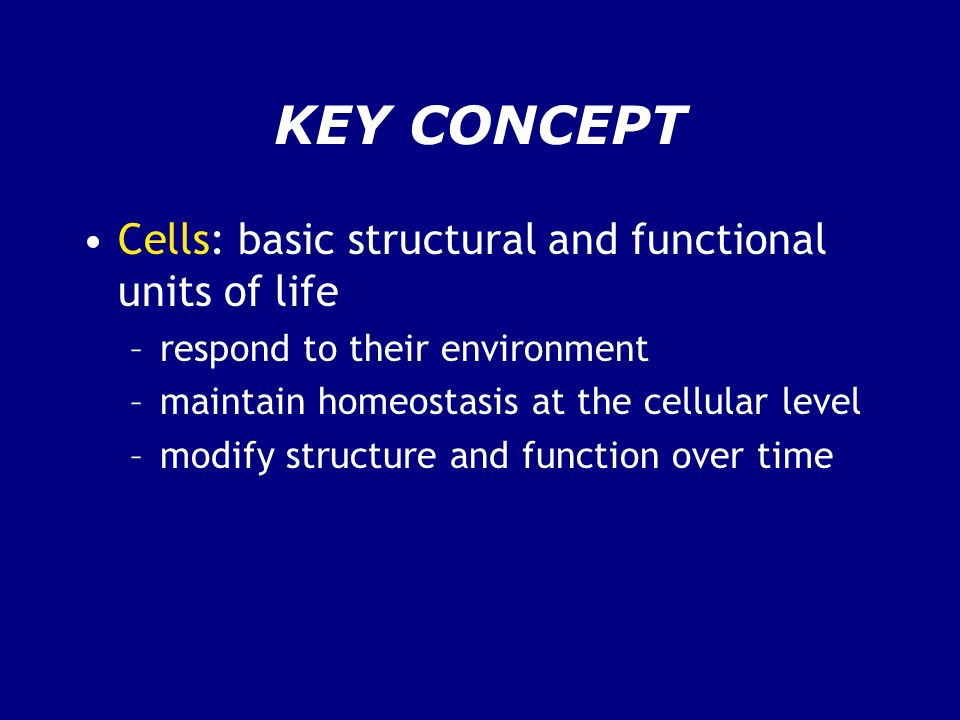 KEY CONCEPT Cells: basic structural and functional units of life –respond to their environment –maintain homeostasis at the cellular level –modify str