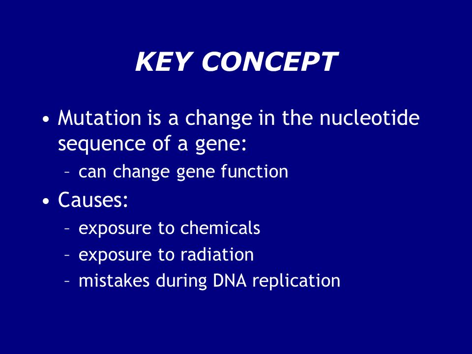 KEY CONCEPT Mutation is a change in the nucleotide sequence of a gene: –can change gene function Causes: –exposure to chemicals –exposure to radiation